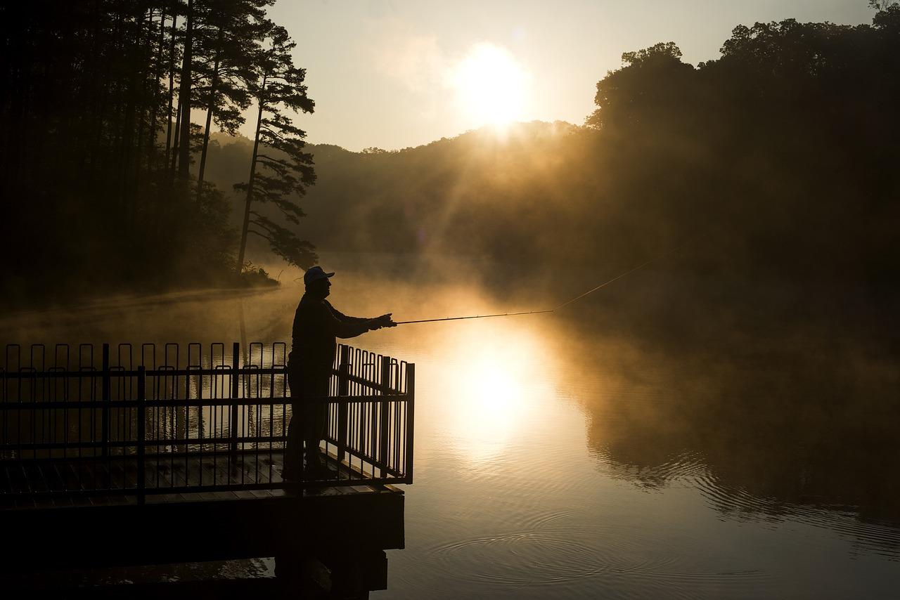 Il carpishing: la passione per la pesca etica